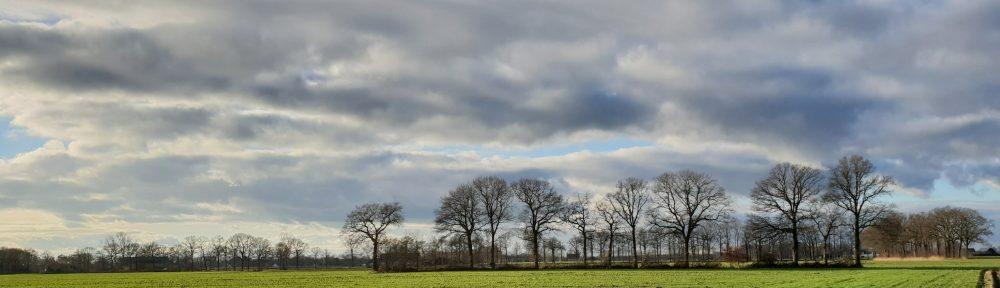 Zen in Breda